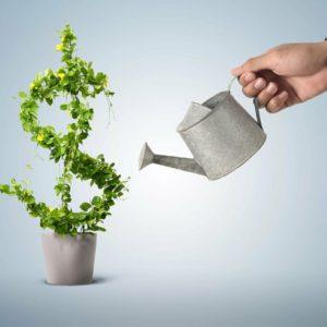 Как купить небольшой готовый бизнес для дополнительного дохода - пример из практики
